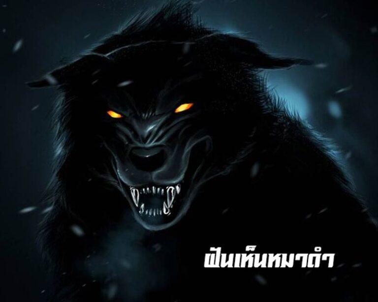 ฝันเห็นหมาดำ