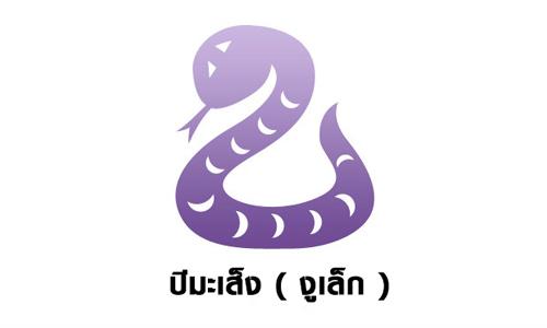 ปีมะเส็ง ( งูเล็ก )